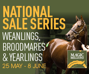 1858_National_Sale_Web_Banners300x250